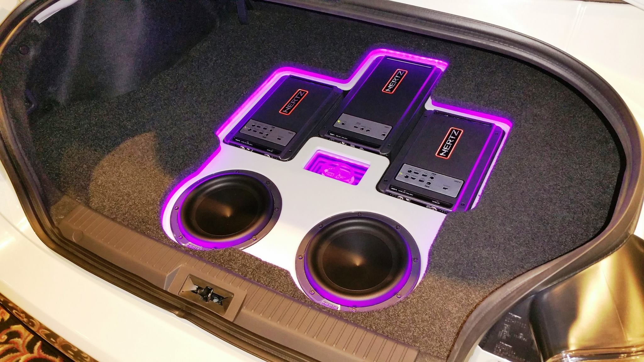 purple trunk.jpg